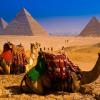 Совет Федерации: текст соглашения о возобновлении полетов в Египет готов